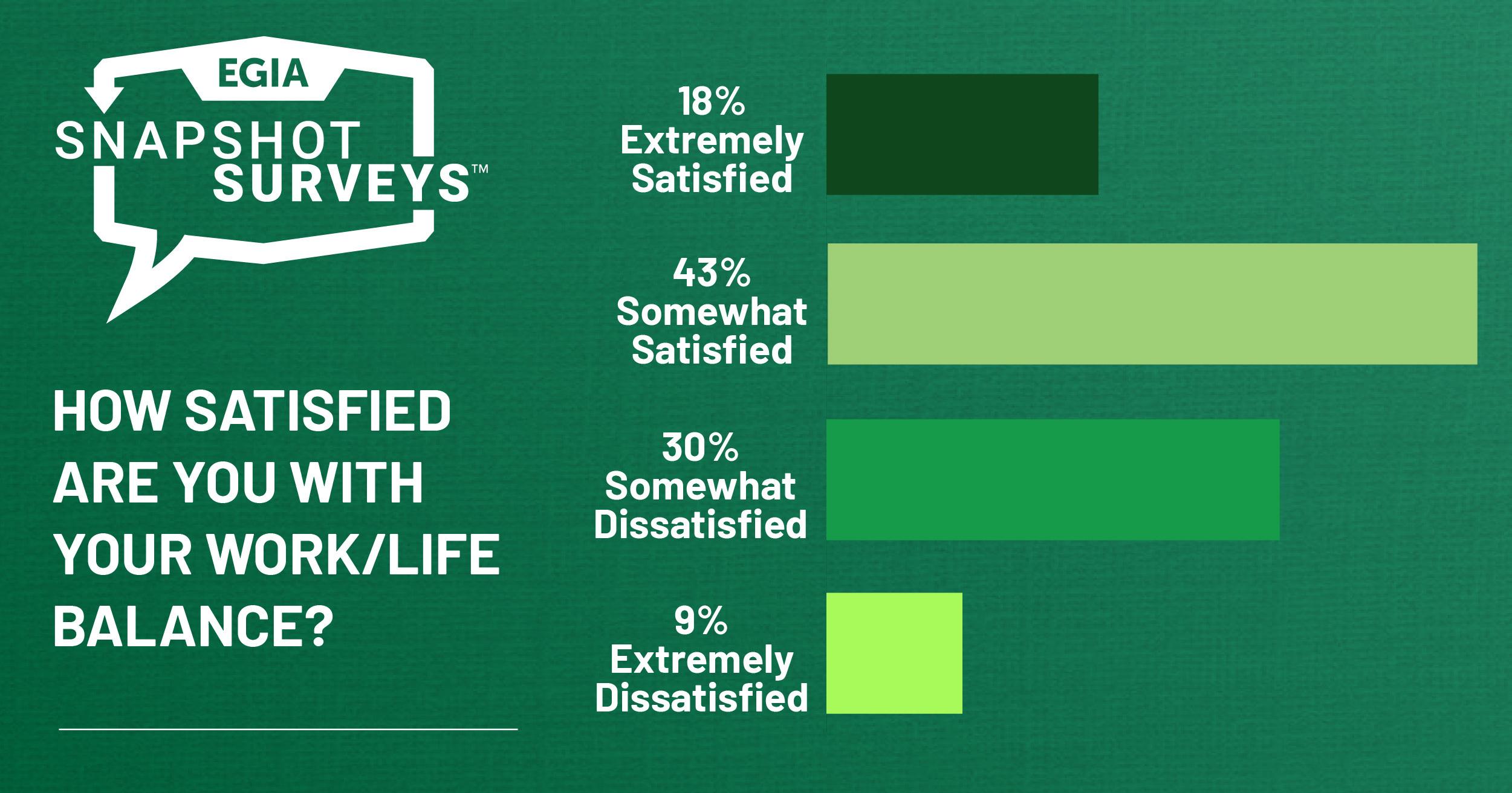 EGIA Snapshot Survey - Work-Life Balance